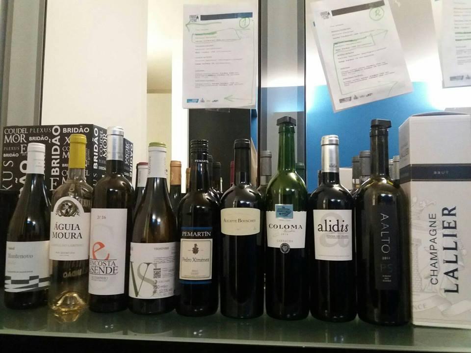 muestras-vinhos-em-cena