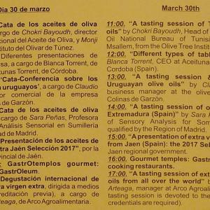 Cartel-Ponencia-Aoves-Extremadura-WOOE