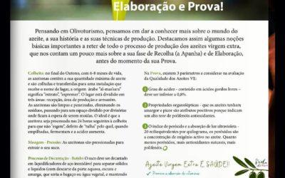 Revista O Escanção. Artículo Proceso de Elaboración AOVE