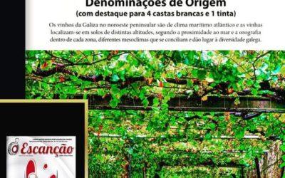 Vinhos Galegos em 5 Denominações de Origem
